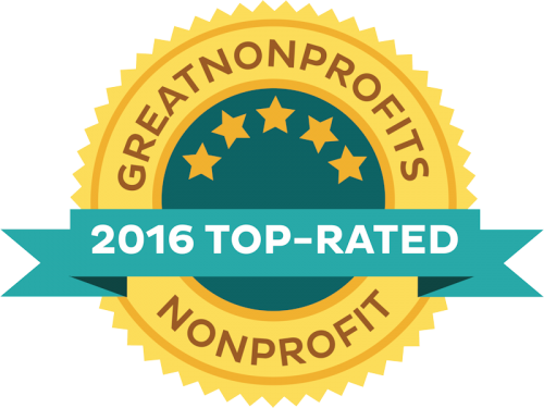 Great Non Profits